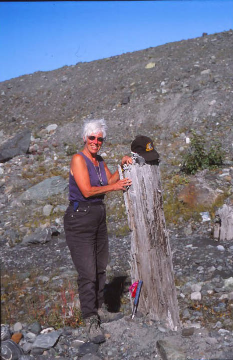 View of Anne Pasch resting her hands on part of a dead tree standing in the Taggland research area near Bering Glacier
